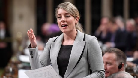 Liberals told to be careful as federal government prepares to consult on plan to combat racism thumbnail