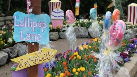 Candycopia, crafts and climbing: What to do during spring break in Edmonton thumbnail