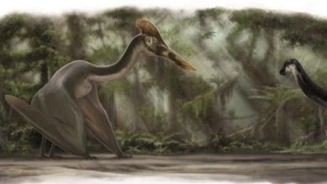 Altmuehltal-Dinosaur-Museum