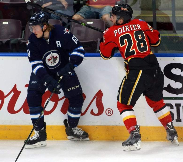 Professional Hockey Player Ordered To Pay For Punching