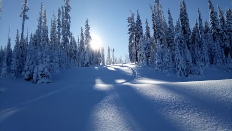 mount-timothy-ski-area