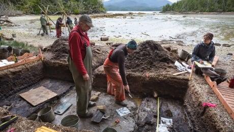 Calvert Island, British Columbia dig site
