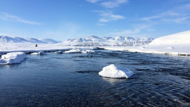 Arctic Lake S Ecosystem Changes After 1 Degree Of Warming