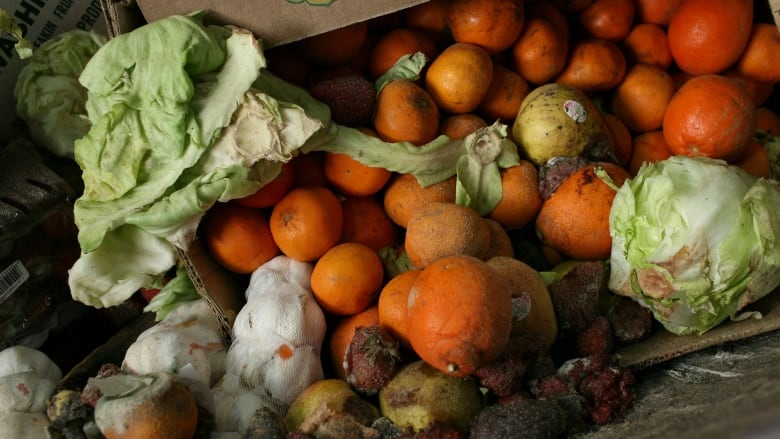 How eliminating food waste can help the fight against climate change