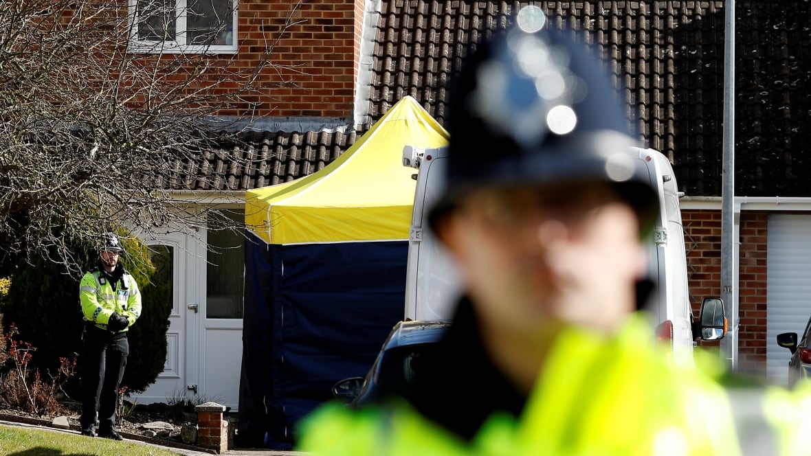 Spy poisoning fake story, United Kingdom playing with fire: Russian Federation