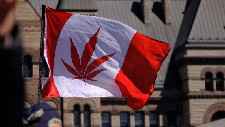 Weed The North Why American Pot Companies Are Listing On A Canadian