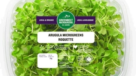Greenbelt Microgreens products recalled due to Listeria concerns