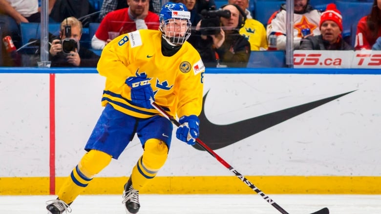 Sweden s Rasmus Dahlin is regarded as the top-rated prospect in this year s NHL  draft 3b3c4493b