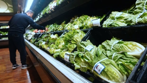 The solution to climate change might be in your fridge
