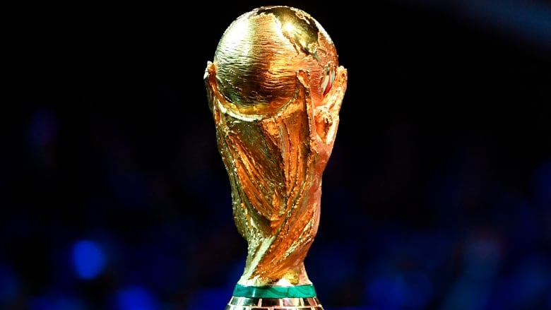 The  Fifa World Cup Will Be Held Between June  And July  Russian Cities File Afp Getty Images