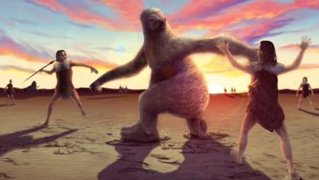 fossil footprints tell story of giant sloth hunt during ice age