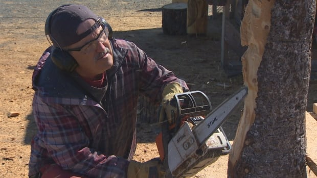 Chainsaw sculptor carving a niche for retirement cbc news