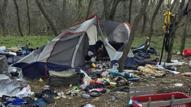 Four Homeless Camps Discovered By Needle Cleanup