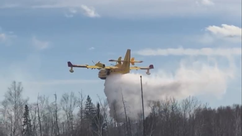 https://i.cbc.ca/1.4657484.1530916530!/fileImage/httpImage/image.png_gen/derivatives/16x9_780/water-bomber.png