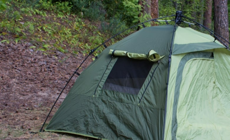 The bear broke through the tentu0027s mesh window similar to this one. (Shutterstock) & B.C. camper wakes up to find bear sniffing him inside tent | CBC News