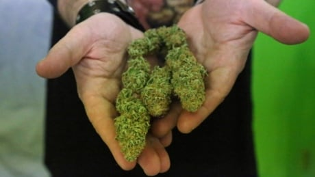 Vote Compass: Should only government-run stores sell weed?