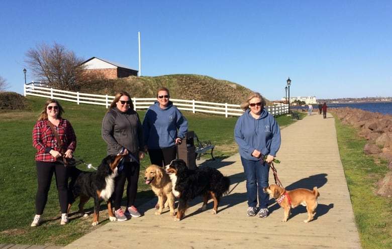 trails victoria for dogs pdf