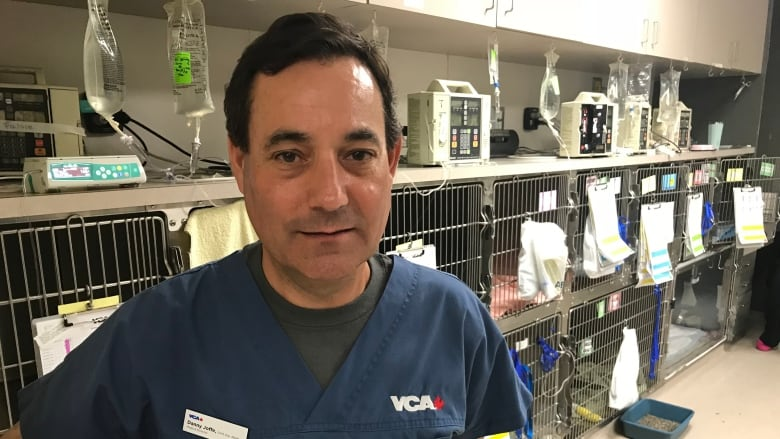 Parker Co Danny Joffe Medical Director At Vca Canada Says Veterinarians Long Believed They Could Declaw Cats Without Causing Them Pain But Evidence Shows They Evans Hunt National Veterinary Clinic Chain Stops Declawing Cats Calls