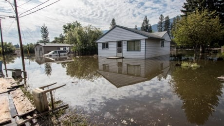 2018 Grand Forks flooding Ruckle