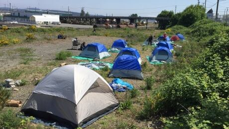 Nanaimo city councillor would 'love' to see tent city at B.C. Legislature