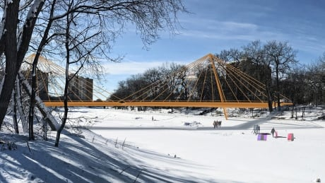 3 designs pitched for new pedestrian bridge over Assiniboine River