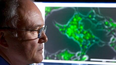 Dr. Donald Weaver