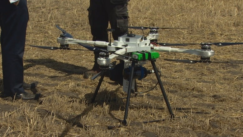 Seed for speed: drones could be game-changer for forestry
