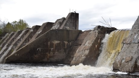 People worried about Scott Falls Dam removal get chance to ask questions