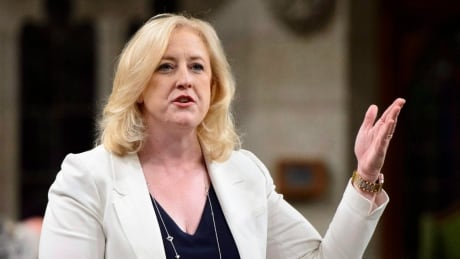 Raitt says her privilege was breached by Liberal minister's 'tweet' non-answer thumbnail