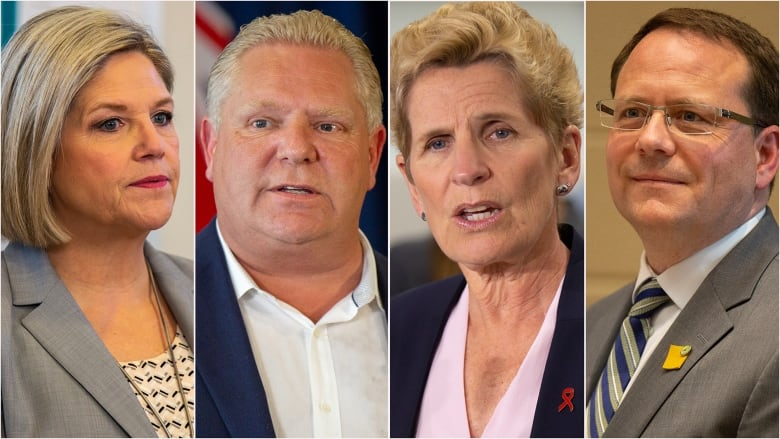 Doug Ford's Progressive Conservatives win majority government in Ontario
