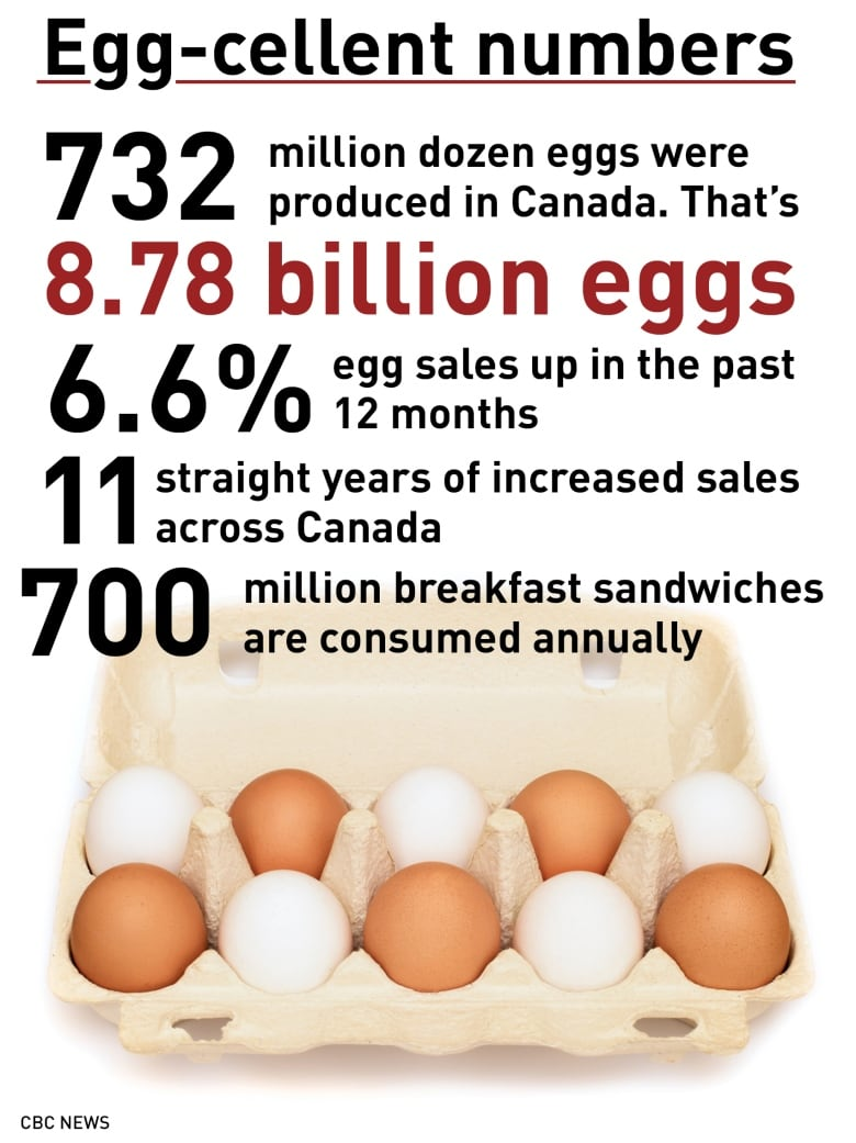 Egg sales soar as Canadians jump at all-day breakfast | CBC News