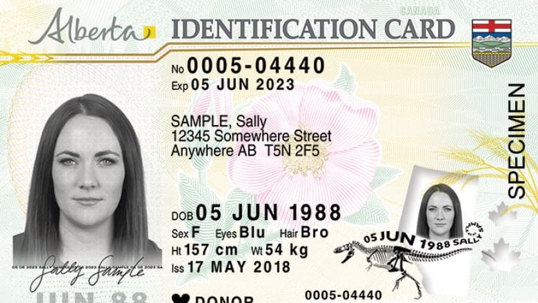 News Redesigned Extra Cbc Driver's Cards Alberta To Licences Id Dinosaur Brings Protection