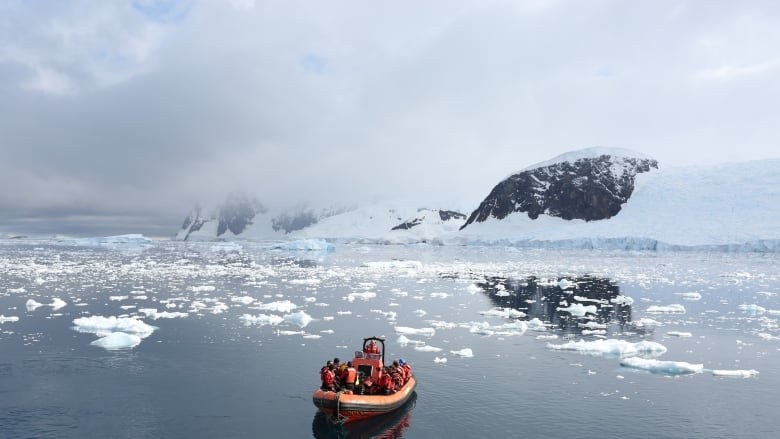 Plastic waste in Antarctica reveals increasing global pollution: Greenpeace