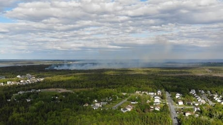 Cole Harbour forest fire