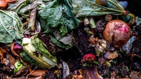 Cities are harvesting spoiled food to create new source of natural gas