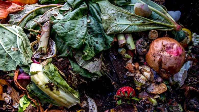 The problem with Ontario's plan to ban food waste from landfills