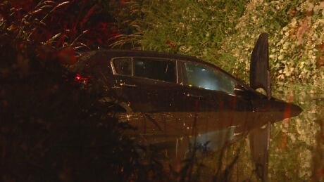 Bystanders help rescue driver after car crashes into water-filled ditch