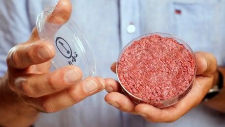 SCIENCE-MEAT/IN-VITRO lab grown meat