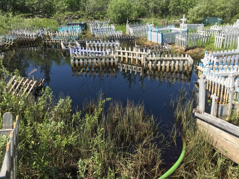 'I don't know where she is': Flooding at Behchoko cemetery leaves graves under water