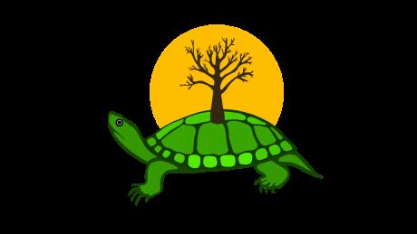 Anishinaabe artist designs Twitter Turtle Island emoji for Indigenous History Month
