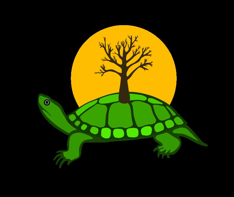 Anishinaabe Artist Designs Twitter Turtle Island Emoji For