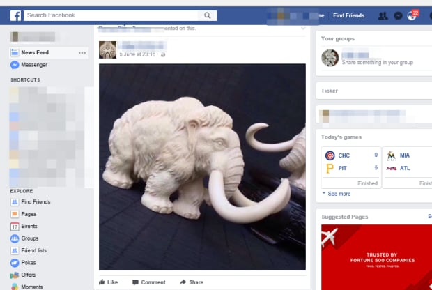 How Facebook became home to a thriving illegal wildlife