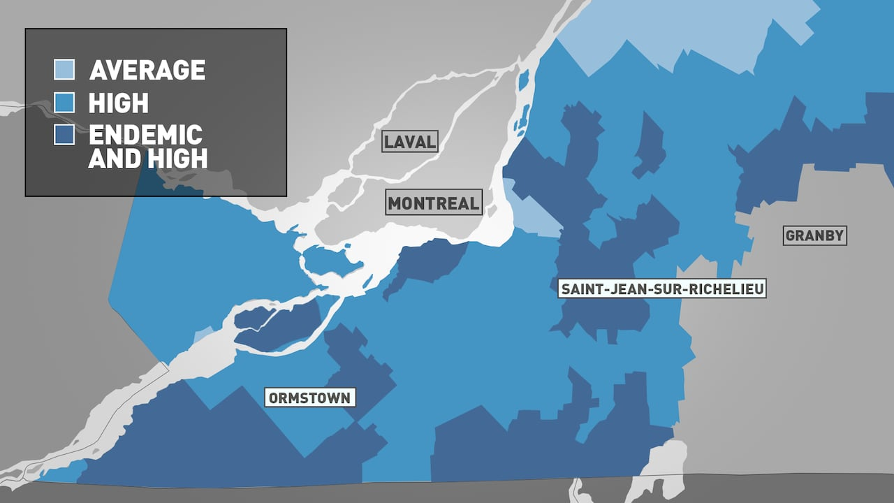 Lyme disease surges in Quebec: What you need to know to