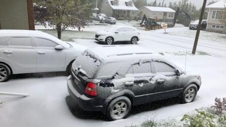 Gander snow in June