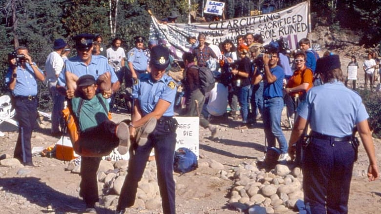 Sawdust still not settled decades after logging protests in