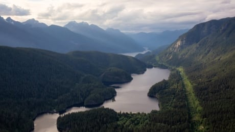 Divers to search Buntzen Lake for missing 19-year-old Surrey man