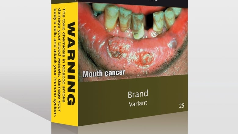 Rules In Favor Of Plain Tobacco Packaging — WTO Sets Precedent