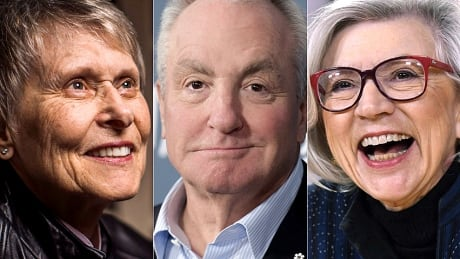 Bondar, Michaels, McLachlin