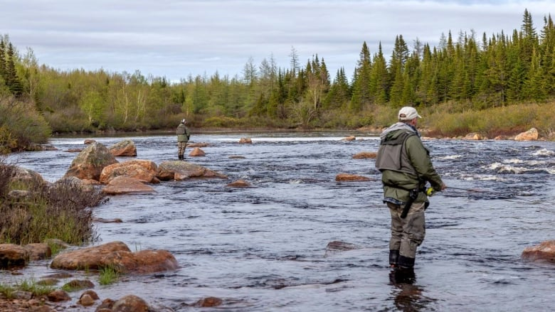 Some rivers reopening for catch-and-release salmon angling