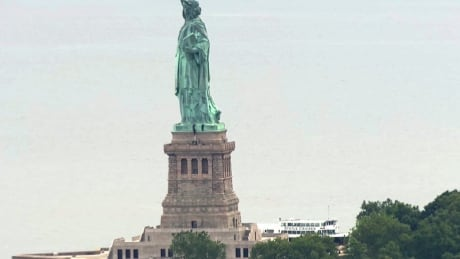 Statue of Liberty Arrests